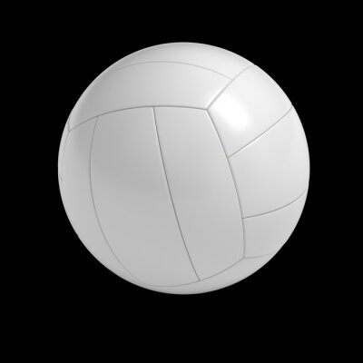 Plakát Blank volleyball ball isolated with clipping path