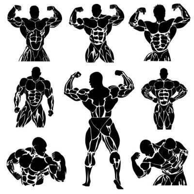 Plakát Bodybuilding, Powerlifting, vector, set