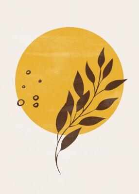 Plakát Botanical vintage print boho sun moon minimalist wall art abstract home decor