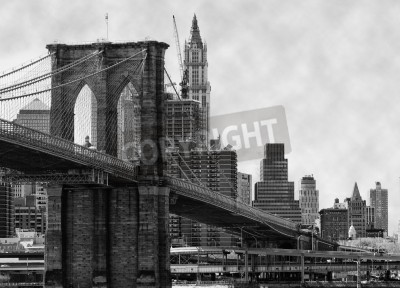 Plakát Brooklyn Bridge New York a řeku East