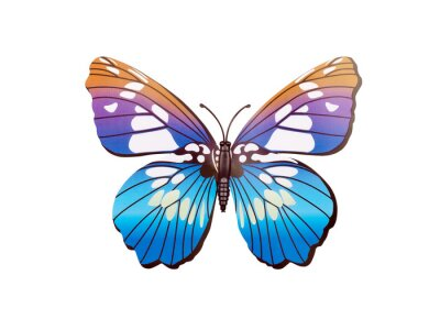 Plakát Butterfly zeď nálepka
