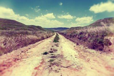 Plakát Camino por el campo.Paisaje y naturaleza