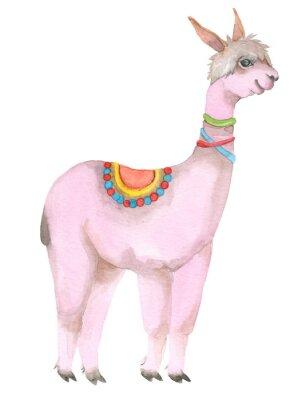 Plakát Cartoon watercolor lama portrait.