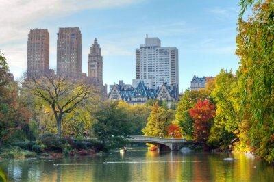 Plakát Central Park na podzim