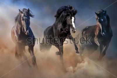 Plakát Černí hřebci cvalují v pouštním prachu proti dramatickému nebi