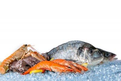 Plakát Čerstvé mořské plody na bílém pozadí