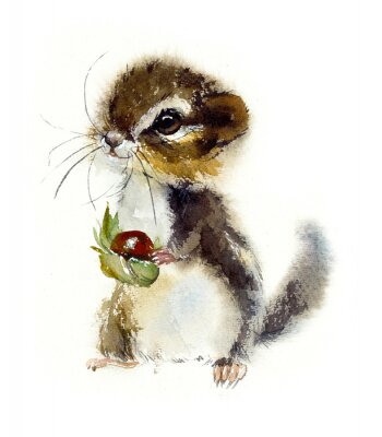 Plakát Chipmunk. Watercolor hand drawn illustration.