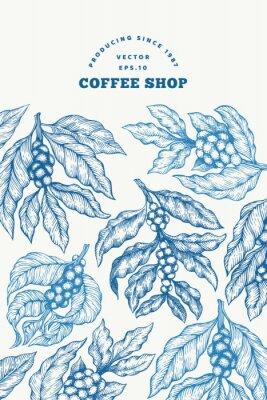 Plakát Coffee tree branch vector illustration. Vintage coffee background. Hand drawn engraved style illustration.