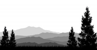 Plakát coniferous forests for you design