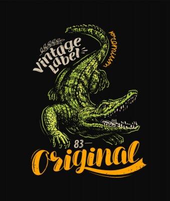Plakát Crocodile t-shirt design. Vintage poster vector illustration