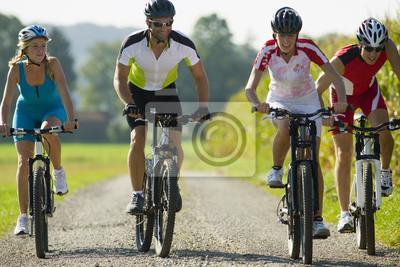 Plakát Čtyři přátelé cyklistické dolů na silnici.