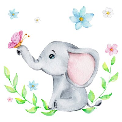 Plakát Cute little elephant with pink butterfly and flowers; watercolor hand draw illustration; with white isolated background