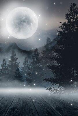 Plakát  Dark abstract winter forest background. Wooden floor, snow, fog. Dark night background in the forest with moonlight. Night view, magic