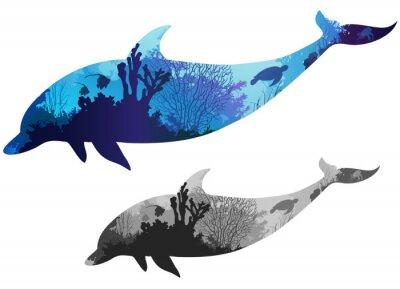 Plakát delfín