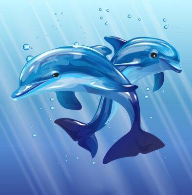 Plakát delfíni