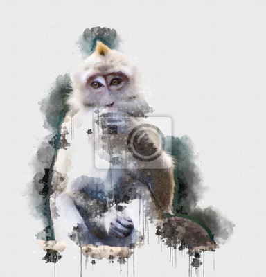 Plakát Digital watercolor painting of Monkey. Painting of Beautiful image of a Monkey in the Forest. Isolated painting of Cute chimpanzee. Endangered Animal Abstract Paintings Wallpaper. Portrait of Monkey