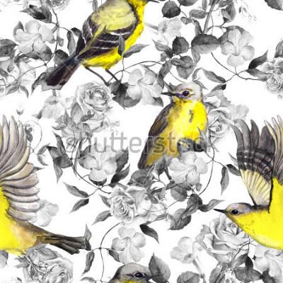 Plakát Divoké luční květiny a ptáci. Vodové barvy. Neutrální bezešvé vzor v monochromatických černé a bílé barvy s jasnými ptáky