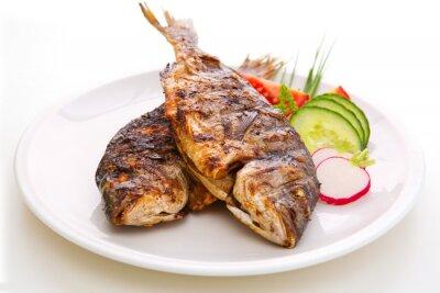 Plakát Dorada ryby.