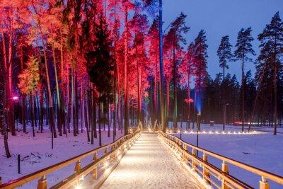 Plakát Dřevěný most v lesoparku. Noční různobarevné světla.