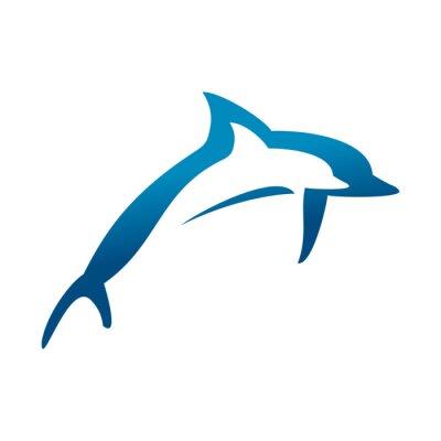 Plakát Dvojité Dolphins