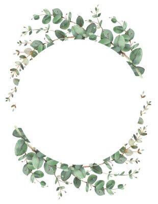 Plakát Eucalyptus circle frame composition
