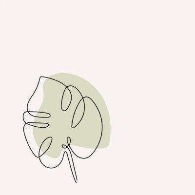 Plakát Eucalyptus monstera leaf continuous line drawing. One line . Hand-drawn minimalist illustration, vector.