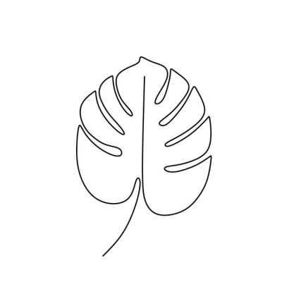 Plakát Exotic monstera continuous one line drawing summer tropical leaf hand drawn on white background minimalist design