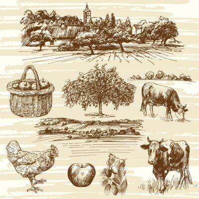 Plakát farmě, sklizeň, venkovské krajiny - ručně kreslenými set