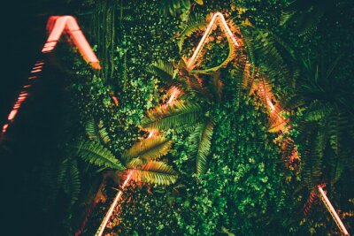 Plakát Flat lay. Creative fluorescent color layout made of tropical leaves with neon light triangle .