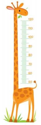 Plakát Giraffe meter wall