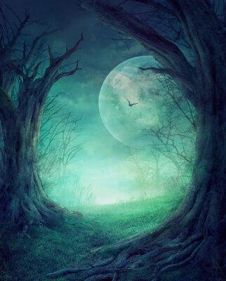 Plakát Halloween Spooky Forest