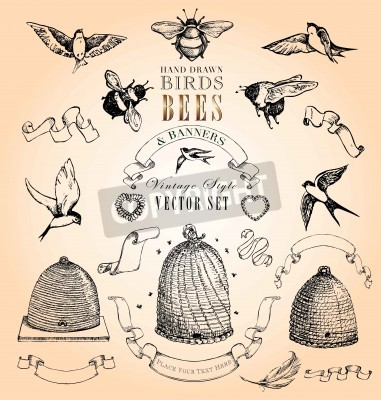 Plakát Hand Drawn Birds, Bees and Banners Vintage Style Vector Set