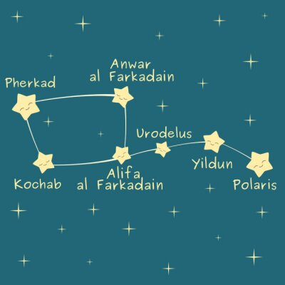 Plakát Hezký kreslený Malý vůz souhvězdí s názvem hvězdy vektorové ilustrace