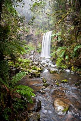 Plakát Hopetoun Falls, na samotě vodopád v Otway Ranges, Austrálie