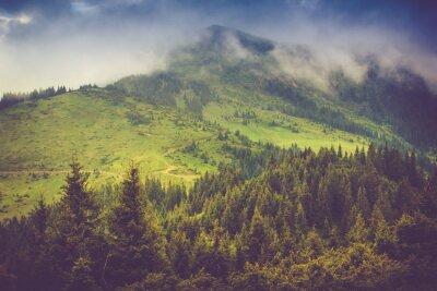 Plakát Horská krajina a lesy desky pokryté mlhou. Dramatické zatažená obloha.