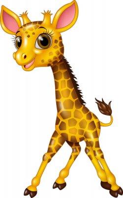 Plakát Karikatura mládě žirafy na bílém pozadí