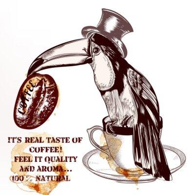 Plakát Káva vektor pozadí nebo plakát s rukou vypracován tukan pták h