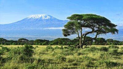 Plakát Kilimandžáro v Keni