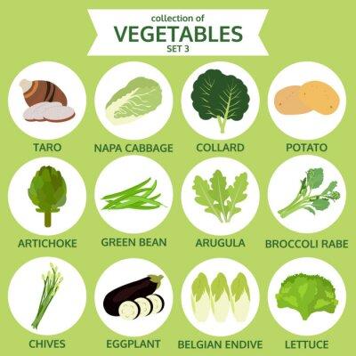 Plakát kolekce zeleniny, strava vektorové ilustrace, sadu ikon thr