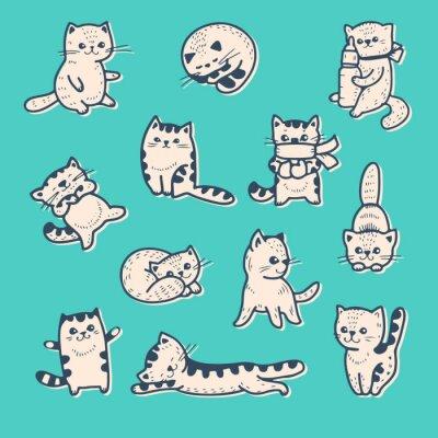 Plakát Koťata