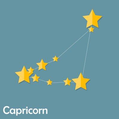 Plakát Kozoroh Zodiac Znamení Krásné jasné hvězdy Vector ILLUS
