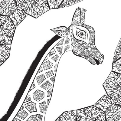 Plakát Krásná dospělá žirafa. Ručně malovaná ilustrace okrasné žirafa. izolovaných žirafa na bílém pozadí. Hlava okrasný žirafa