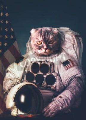 Plakát Krásná kočka astronaut.
