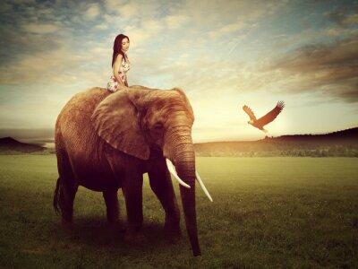 Plakát Krásná žena, sedící na slonovi