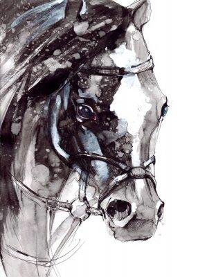 Plakát kůň
