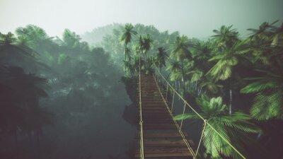 Plakát Lanový most v mlhavé džungle s palmami. Podsvícený.