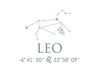 Plakát LEO LEO