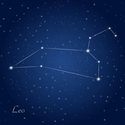 Plakát Leo souhvězdí znamení zvěrokruhu v hvězdné noční obloze