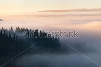 Plakát Les v horách pokrytých mlhou