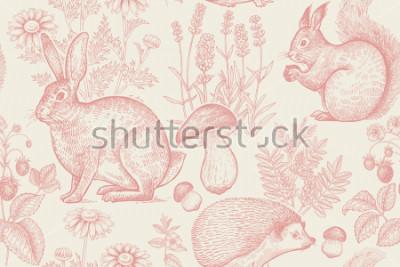 Plakát Lesní zvířata a rostliny bezšvový vzor. Zajíc, ježka, veverka, jahody, květiny levandule, heřmánek a houby. Ruční kreslení. Bílá a červená. Vintage gravírování. Vektorové ilustrace